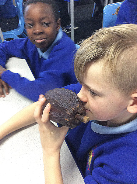 boy-smelling-cocoa-pod